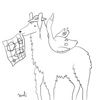 Llama & goose